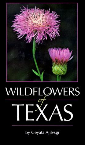 Download Wildflowers of Texas