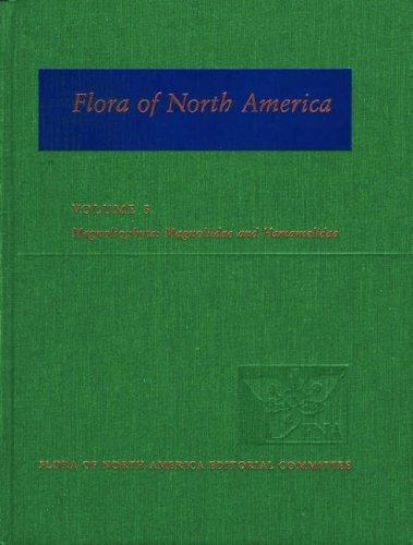 Flora of North America: North of Mexico Volume 3: Magnoliophyta: Magnoliidae and Hamamelidae (Flora of North America: North of Mexico) by Flora of North America Editorial Committee